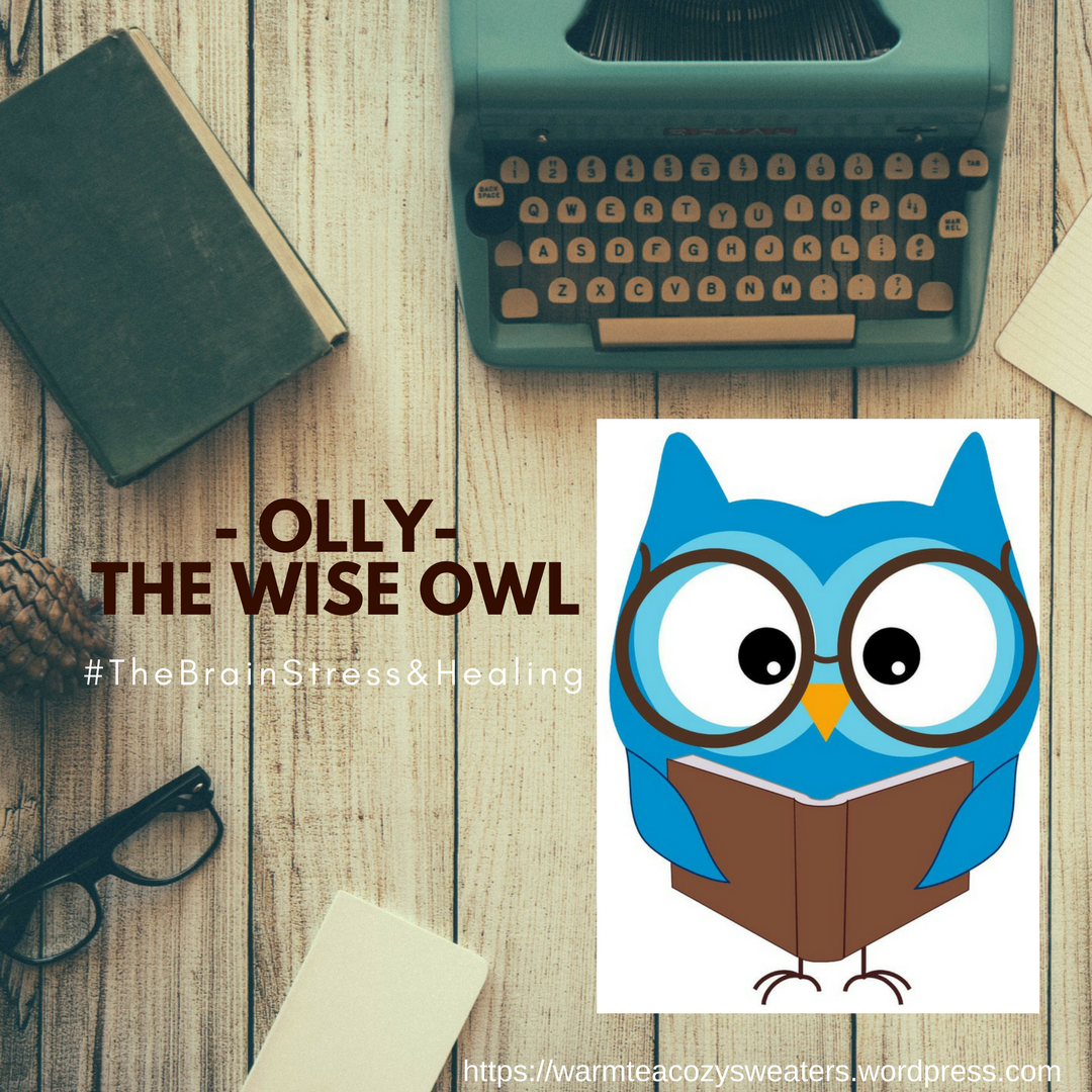photo-ollyowl